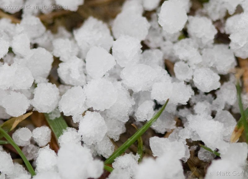 What is Graupel? - @wxbrad Blog